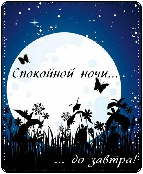 Короткие пожелания доброй ночи в прозе